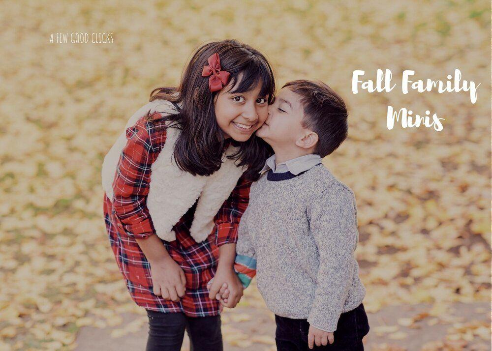 Fall Mini Family Photo Sessions in Bay Area, California