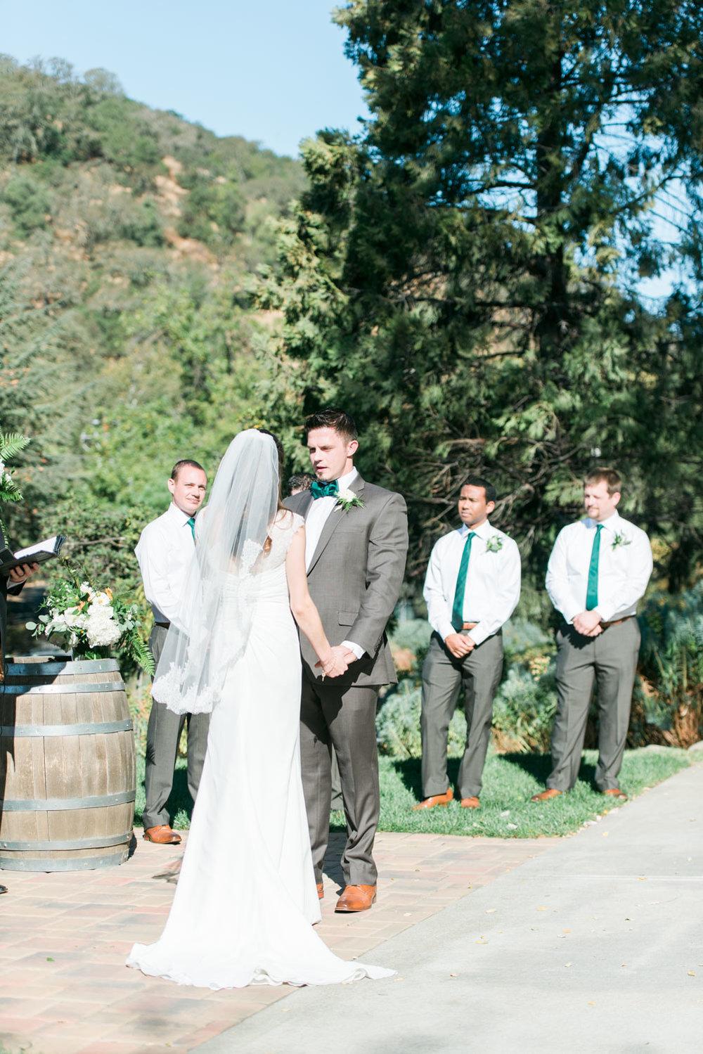 elliston-vineyard-wedding-photographer-afewgoodclicks.net