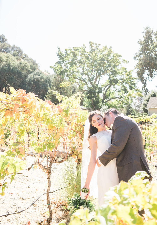 bride-groom-portraits-vineyard-wedding-photography-elliston-sunol-afewgoodclicks.net
