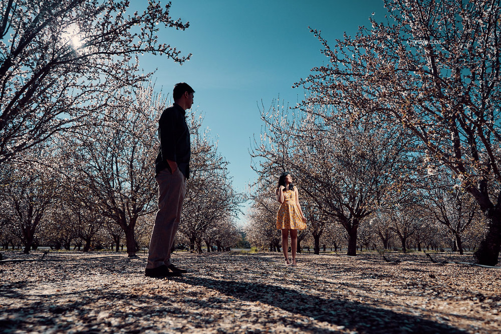 engagement-photoshoot-almond-farms-bay-area-by-afewgoodclicks+109.jpg