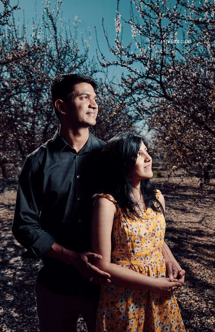 engagement-photoshoot-almond-farms-bay-area-by-afewgoodclicks+112.jpg