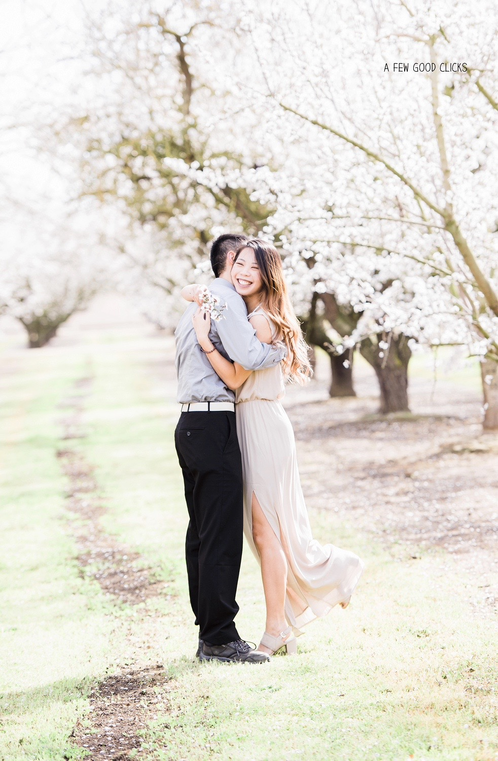 hugging-couples-under-spring-almond-blossom-pose