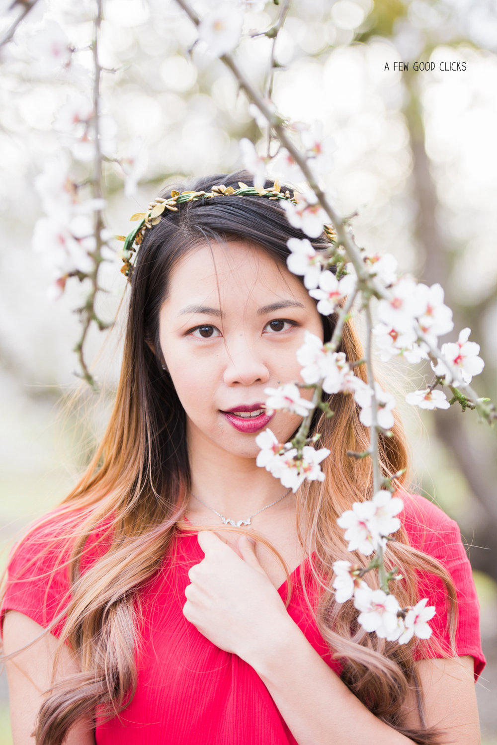 almond-blossom-lifestyle-portrait-photography-by-afewgoodclicks-net-121.jpg