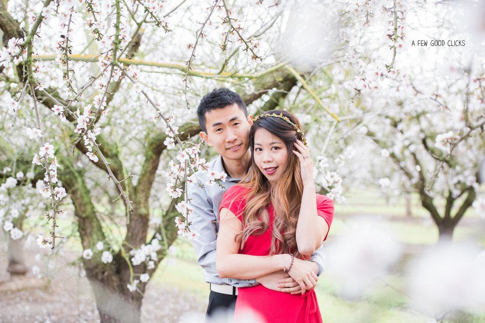 almond-blossom-lifestyle-portrait-photography-by-afewgoodclicks-net-130.jpg