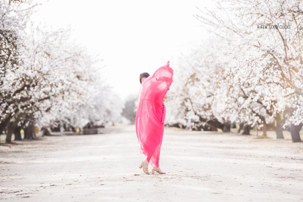 almond-blossom-lifestyle-portrait-photography-by-afewgoodclicks-net-149.jpg