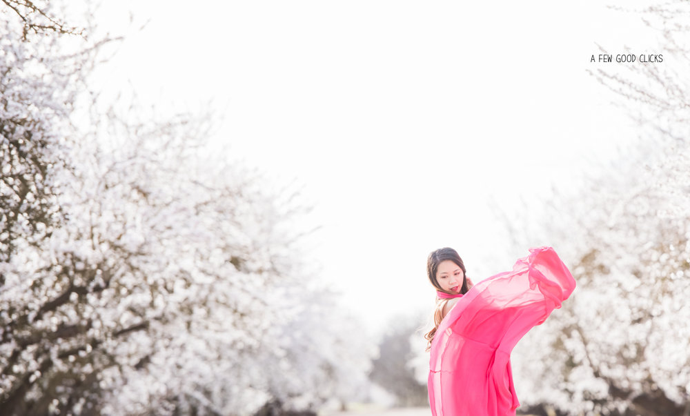 almond-blossom-lifestyle-portrait-photography-by-afewgoodclicks-net-150.jpg