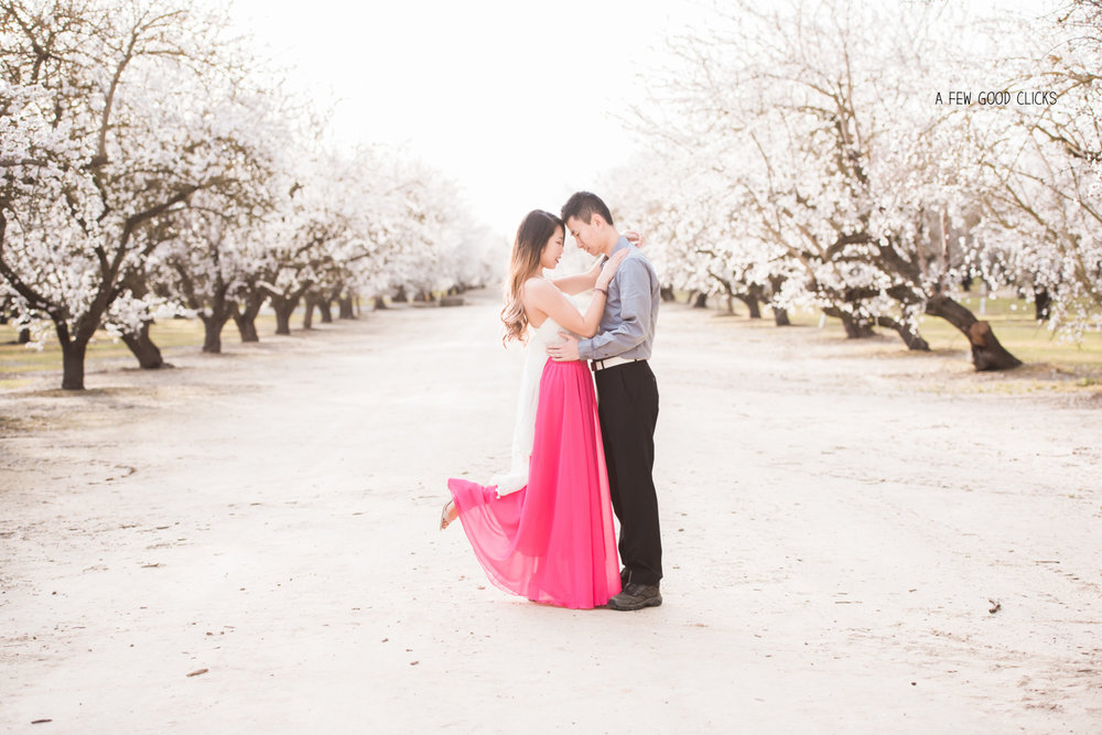 almond-blossom-lifestyle-portrait-photography-by-afewgoodclicks-net-163.jpg