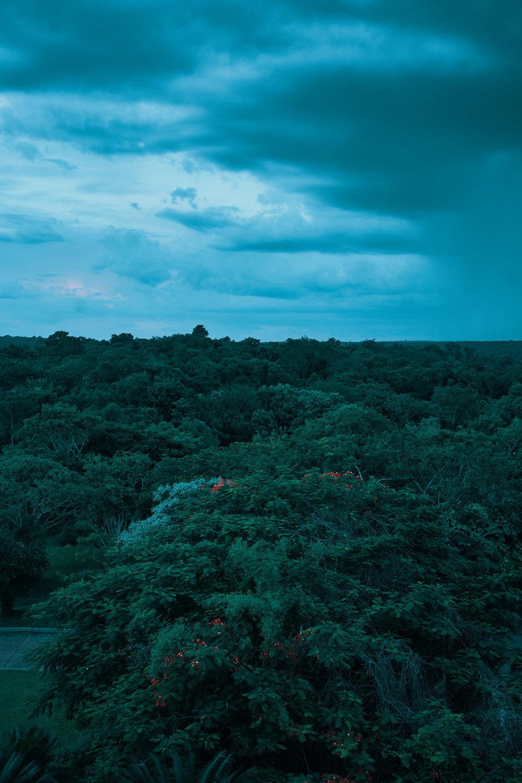 iguazu-rainforest-top-places-to-visit-in-2019-photos-by-afewgoodclicks