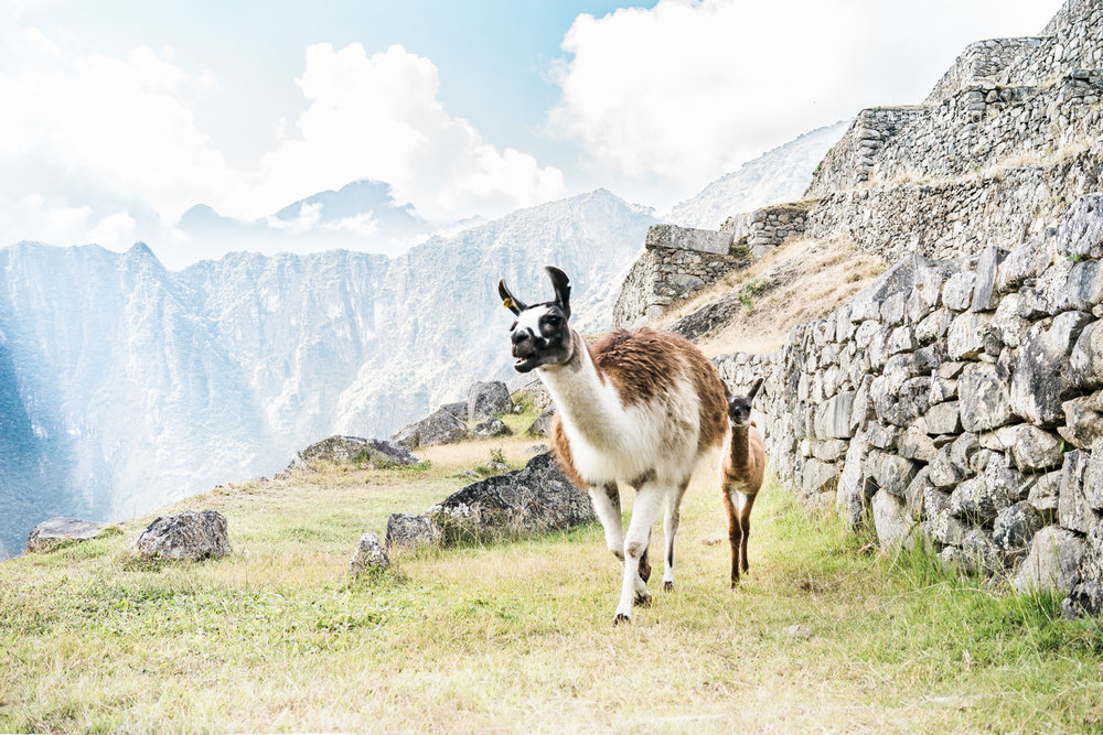 best-of-peru-photographs-things-to-do-12-day-itinerary-a-few-good-clicks-net-278.jpg
