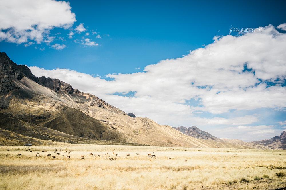 views-andes-puno-cusco-train-travel-best-of-peru-afewgoodclicks.net-2016