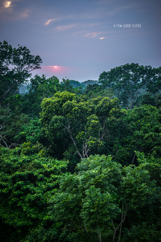 sunrise-in-peruvian-amazon-canopy-tower-refugio-amazonas-by-travel-photographer-2016-afewgoodclicks.net