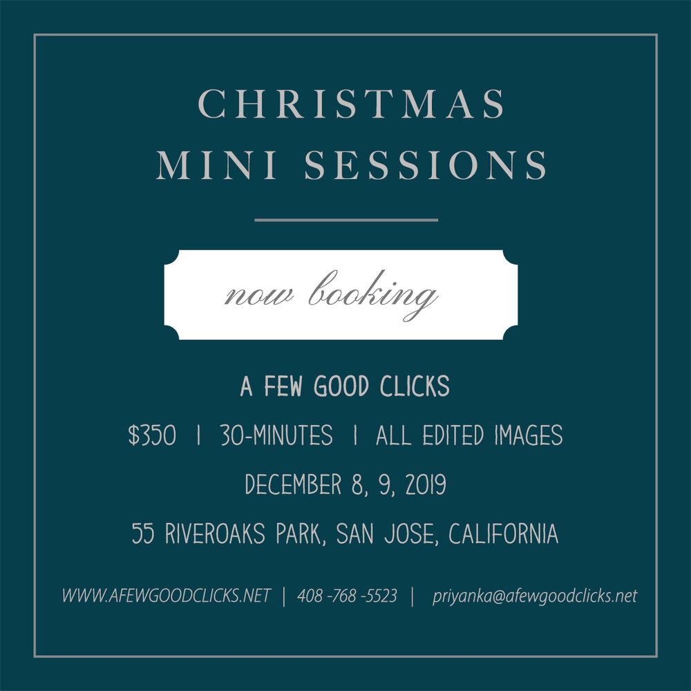 christmas-mini-family-photo-sessions-in-north-san-jose-california-afewgoodclicks