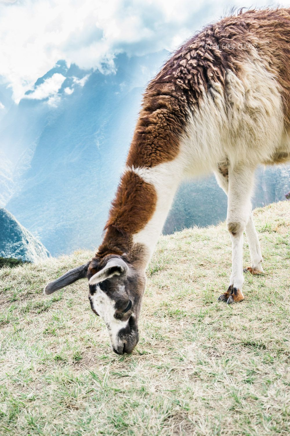 Best Things To Do In Peru - 12 Days Itinerary With Photos